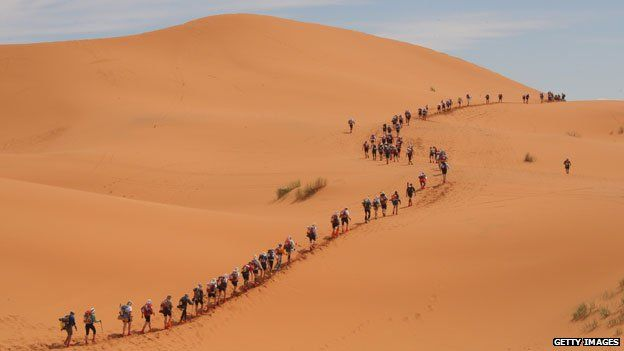 Marathon des sables runners snake across the sands in 2009