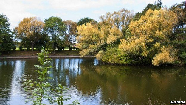 Walton Hall Park lake and trees