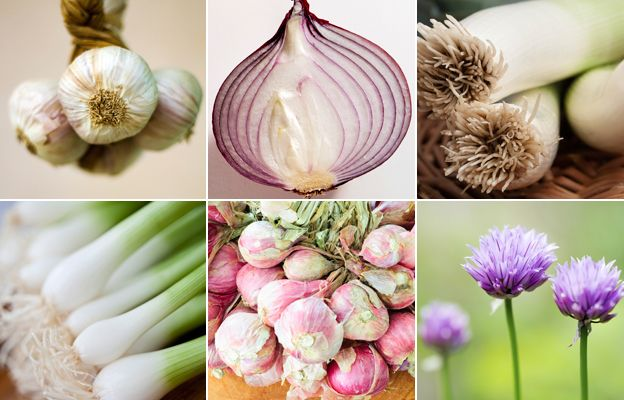 From top left, clockwise: garlic, red onion, leeks, chives, shallots, spring onions