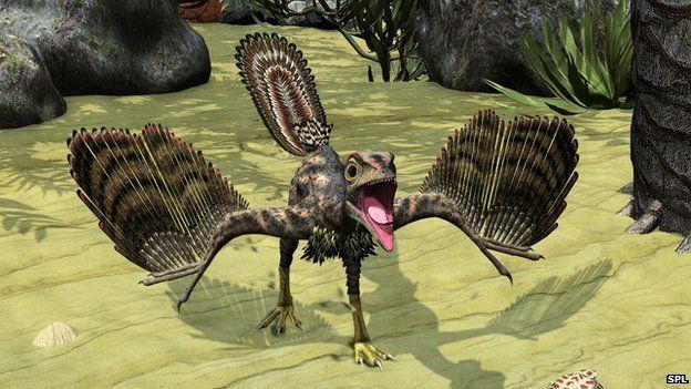 Artist's impression of Archaeopteryx
