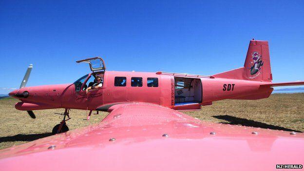 Plane belonging to Skydive Taupo (file image)