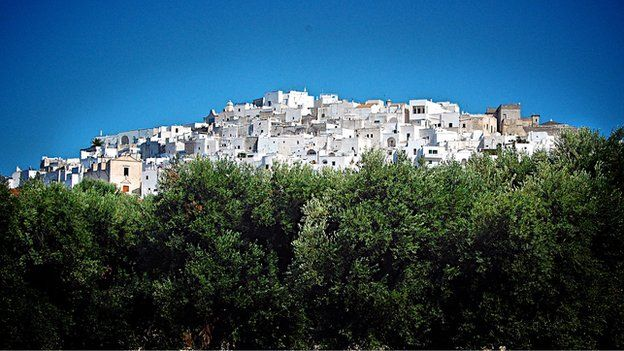 Olive trees and town, Puglia (Image: BBC)
