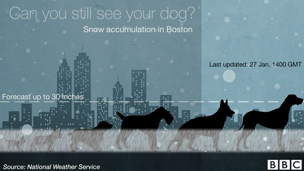 US blizzard: Charting the snow depth - using six dogs - BBC News