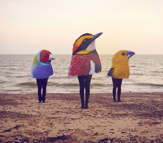 Three people standing on the beach wearing huge bird heads