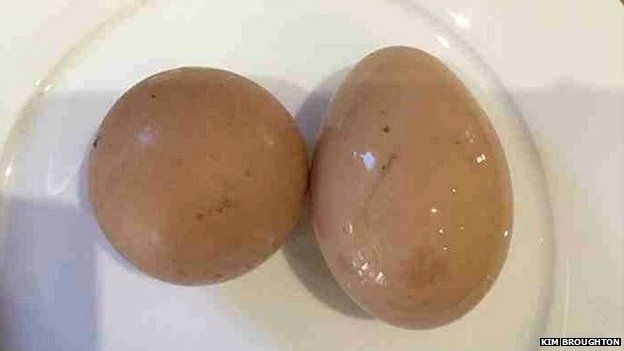 Round egg and normal egg