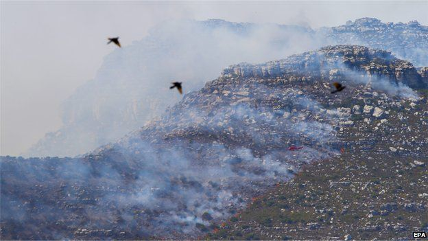 Birds fly in front of a fire-fighting helicopter over a bush fire in Silvermine, Cape Town, South Africa 02 March 2015