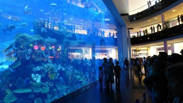 people next to large aquarium in Dubai Mall