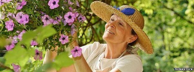 Older woman cutting flowers