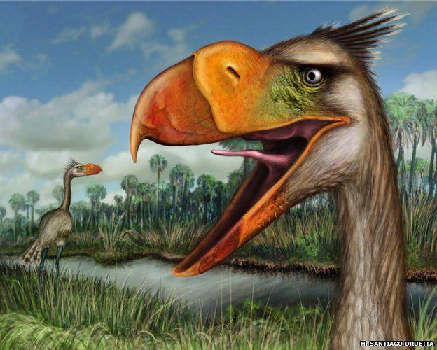 Terror bird illustration