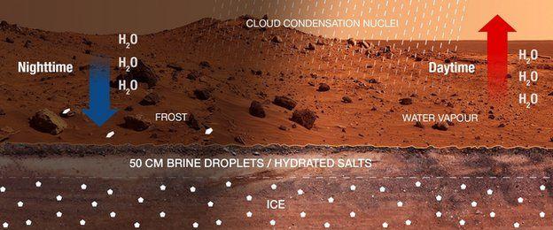 Mars infograpgic