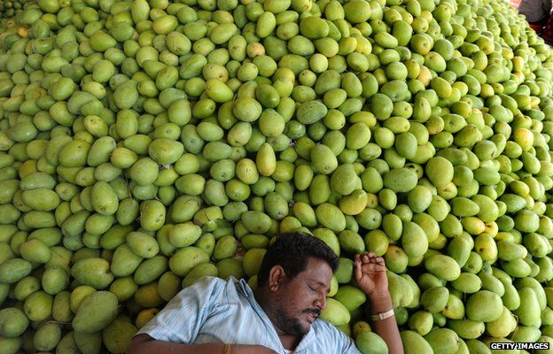 An Indian farmer takes rest after unloading mangoes at the Gaddiannaram Fruit Market, on the outskirts of Hyderabad on 6 May, 2013