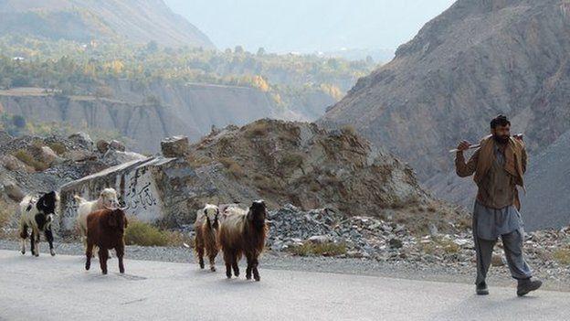A shepherd on Mastuj Road, near Chitral