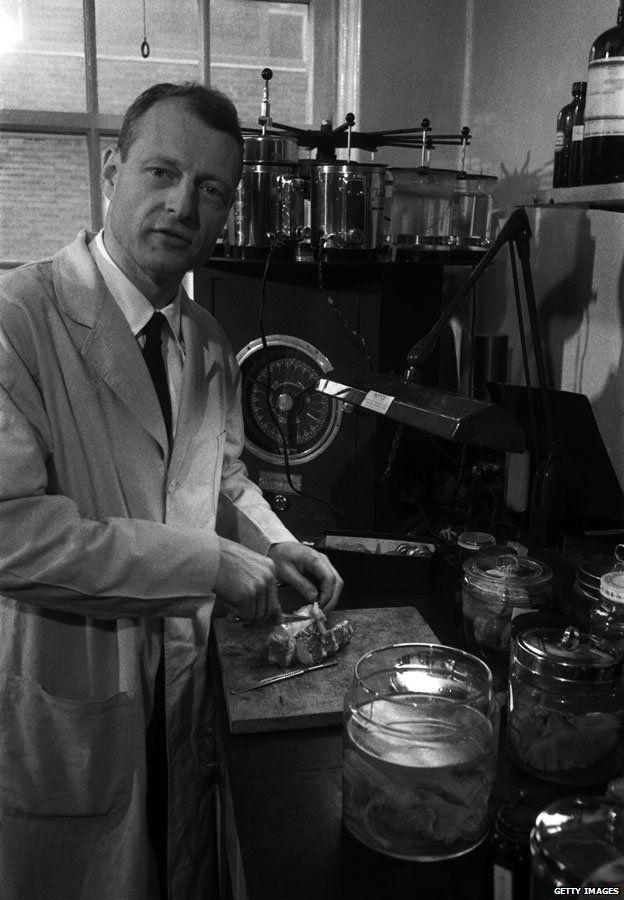 vasta selezione nuova versione ultima moda The strange afterlife of Einstein's brain - BBC News