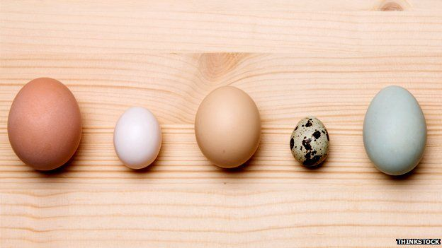A variety of eggs