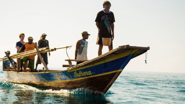 Hunting whales with rowing boats and spears - BBC News