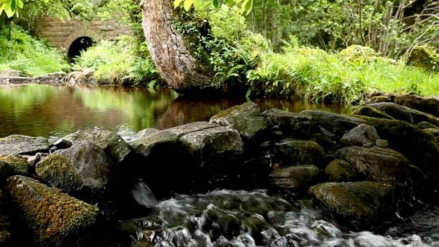 St Patrick's Holy Well outside Belcoo, County Fermanagh, which is featured in one of Mr Lawson's videos