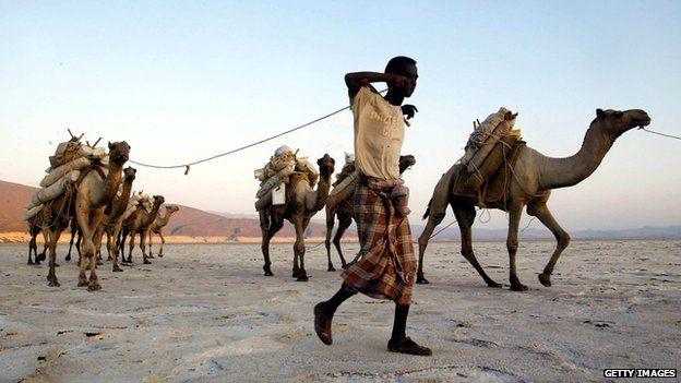 Afar nomad