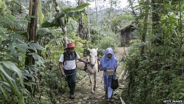 42 year old Ridwan Sururi accompanied by his daughter Indriani Fatmawati and Luna, a horse used as mobile library walk to Miftahul Huda Islamic elementary school on May 5, 2015 in Serang Village, Purbalingga, Central Java Indonesia.