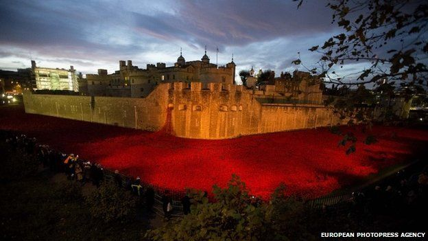 Ceramic poppies on display at the Tower of London