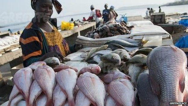 Woman at a West Africa fish market