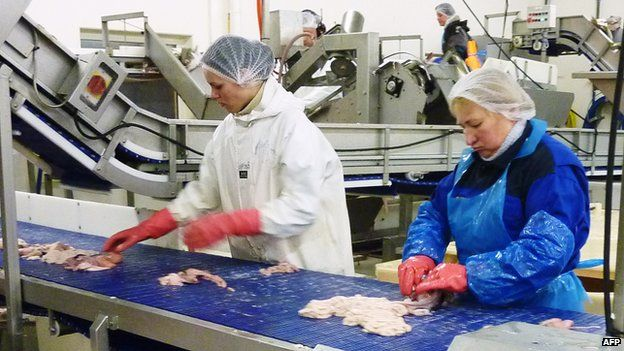 Fish processing in Napp, northern Norway