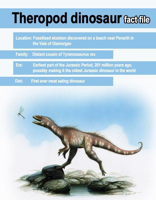 Dinosaur graphic