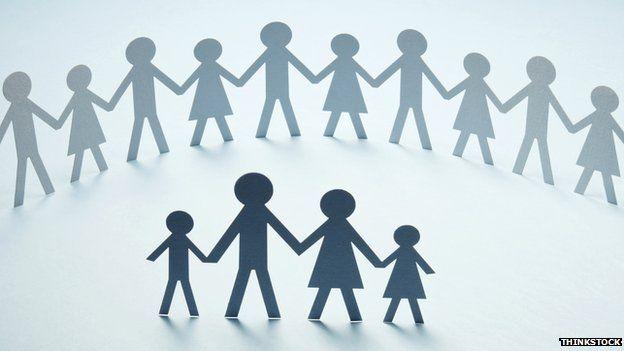 Families represented in paper