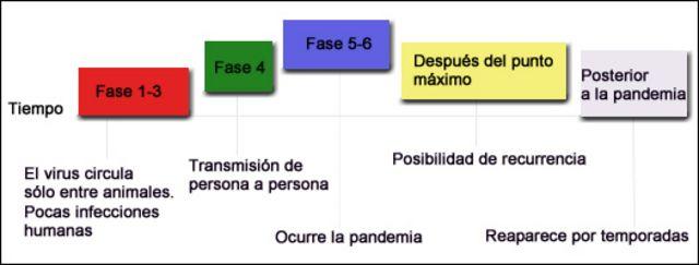 Gráfico de las 6 fases de alerta pandémica de la OMS