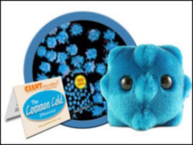 Productos referidos a la gripe porcina