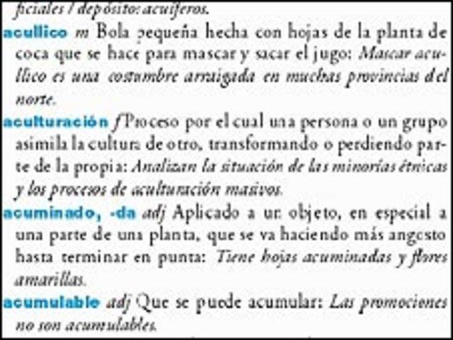 Imagen del diccionario de expresiones argentinas.