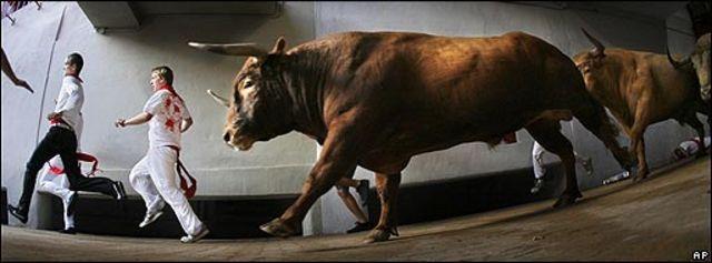 Encierros de toros en Pamplona, España.