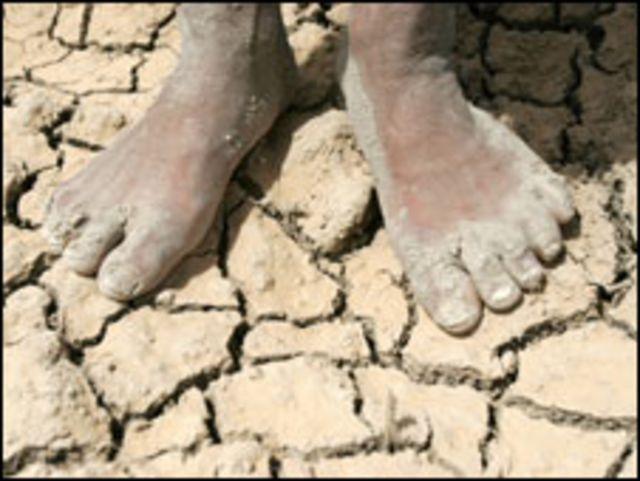 جفاف في العراق