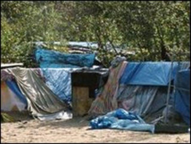 معسكر الغابة في كاليه