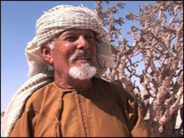 محمد سالم جداد