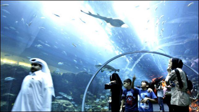 حوض دبي للأسماك
