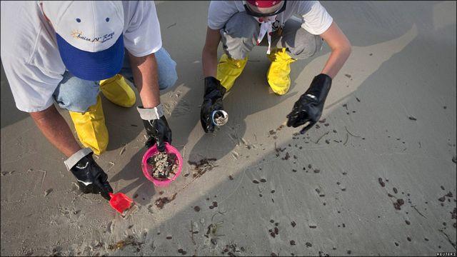 Trabajadores recogen bolitas de petróleo en Dauphin Island.