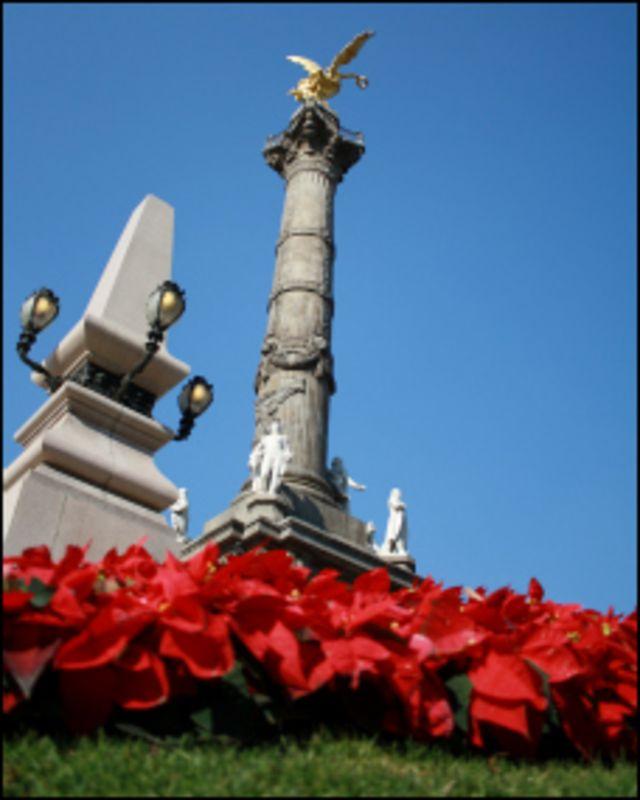 Nochebuenas en el Ángel de la Independencia, Ciudad de México. Foto: Ignacio de los Reyes