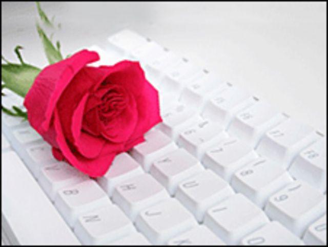 Rosa sobre teclado
