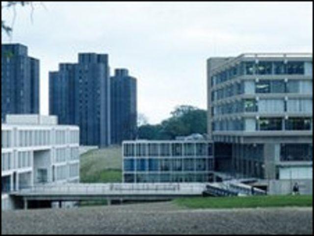 艾塞克斯大學