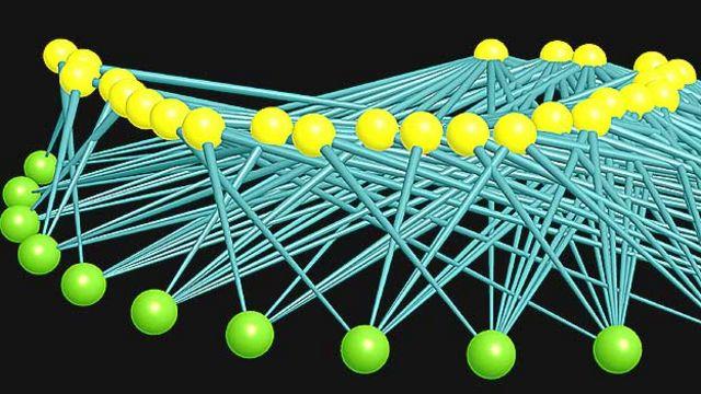 Red ecológica elaborada por Jordi Bascompte