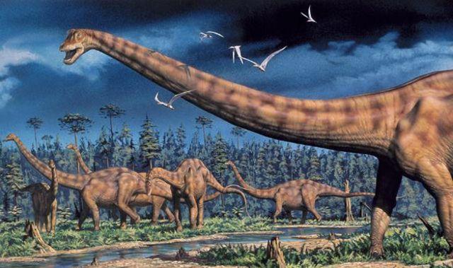 Evolucion Sexo Y Los Cuellos De Los Dinosaurios Bbc News Mundo El dinosaurio aublysodon era un tipo de carnívoro que se parecía mucho al tyrannosaurio en su el apatosaurio es uno de los más famosos dinosaurios de cuello largo, los dinosaurios herbívoros. sexo y los cuellos de los dinosaurios