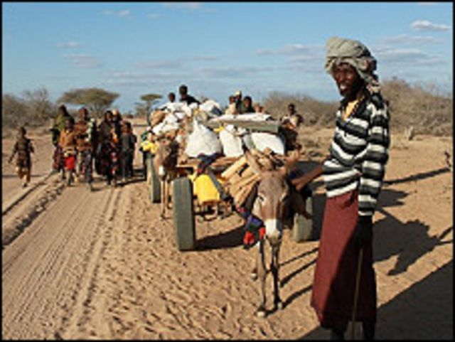 အာဖရိက ဦးချိုဒေသမှာ မိုးခေါင်ရေရှားမှု ဒဏ်ကို ဆိုးဆိုးဝါးဝါး ခံနေရ