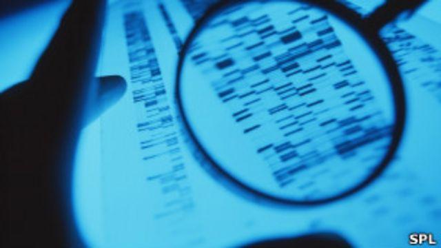 Mapeamento de DNA