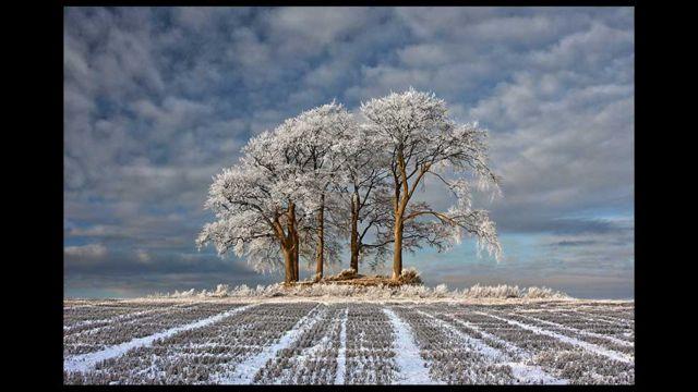 Foto: Robert Fulton / Landscape Photographer of the Year