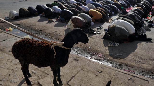 Salat Idul Adha di Afghanistan