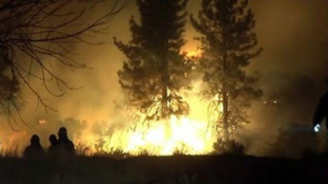Kebakaran hutan di Nevada AS