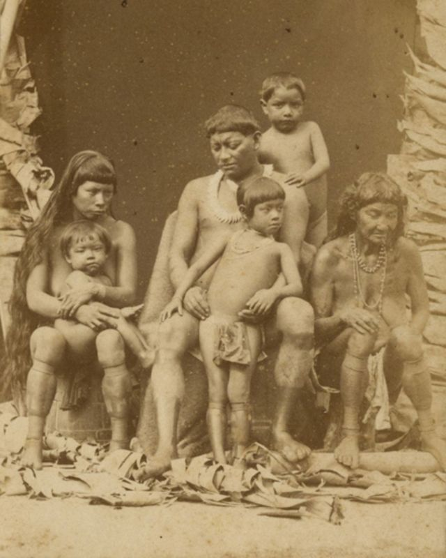 Indios Galibi