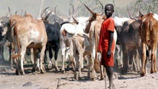 Wani makiyayi a Sudan ta Kudu