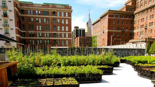 Riverpark Farm, la granja portátil en Nueva York