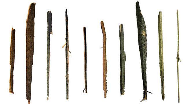Astillas separadas por la cacatúa Fígaro de un tirante de madera